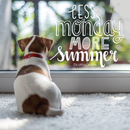 Less monday more summer quote raamtekening